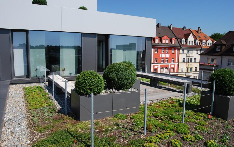 Dachbegrünung des Venet-Hauses in Neu-Ulm