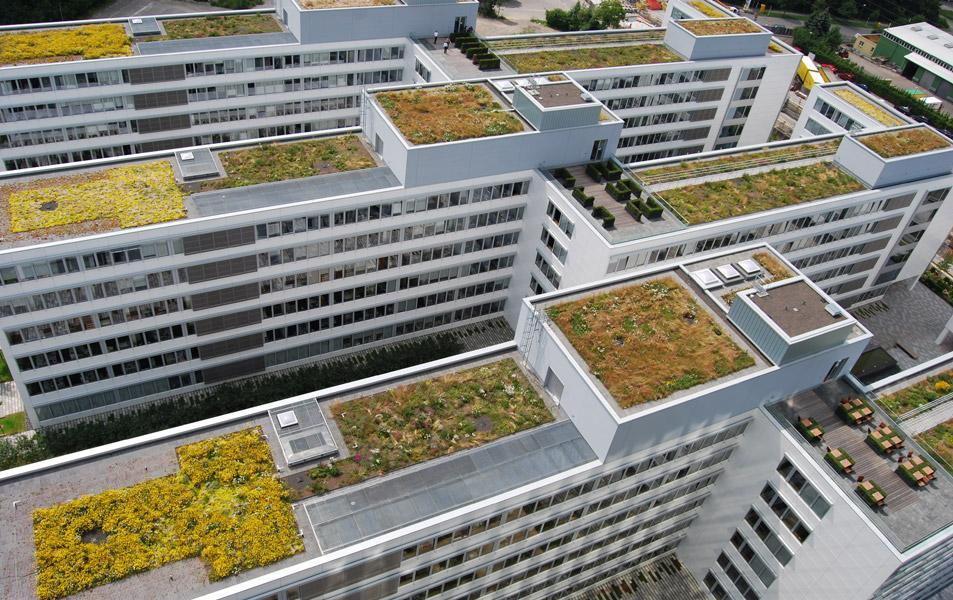 Blick auf das Gründach des EnBW-Gebäudes in Stuttgart