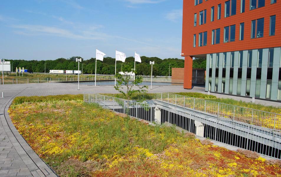 Dachbegrünung auf dem Podium im niederländischen Amersfoort