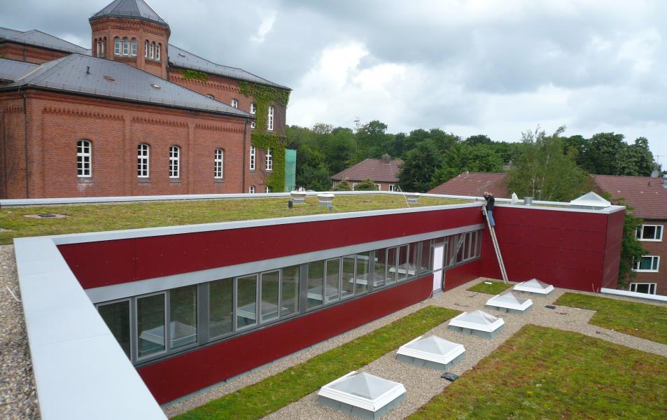 Dachbegrünung der Schule in Bad Bederkesa, Landkreis Cuxhaven