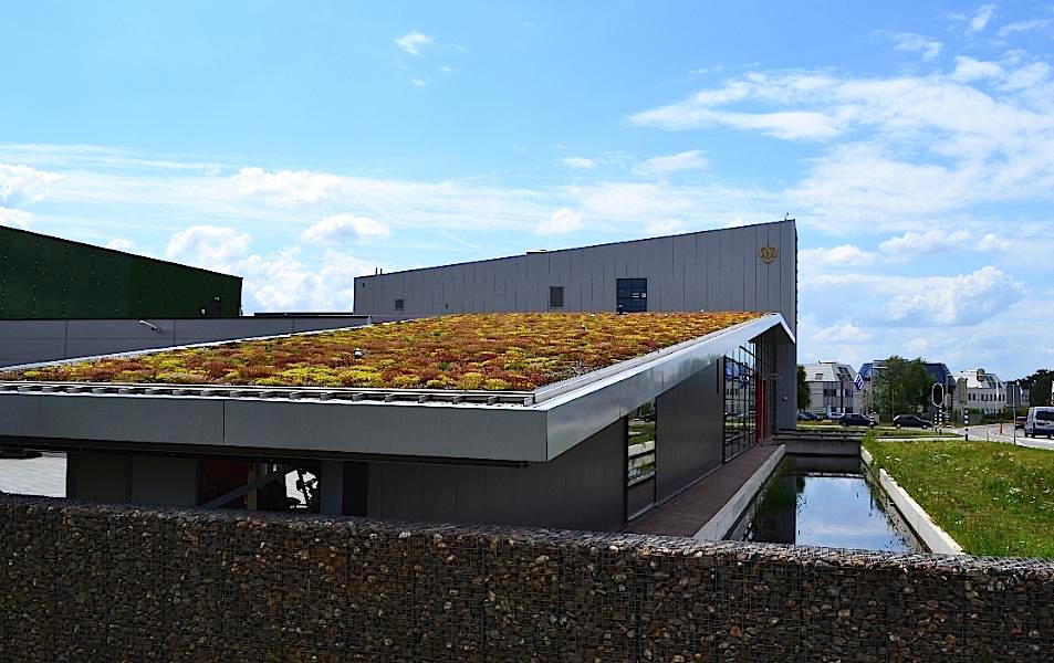 Extensive Dachbegrünung des Feuerwehrhauses im niederländischen Venlo