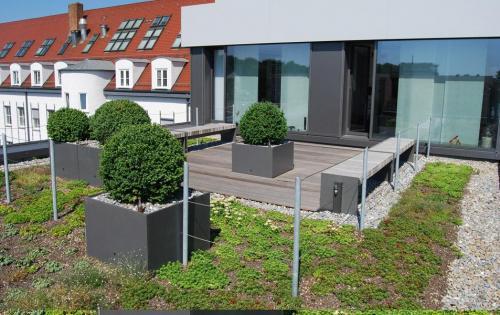 Begrünte Dachterrasse des Venet-Hauses in Neu-Ulm