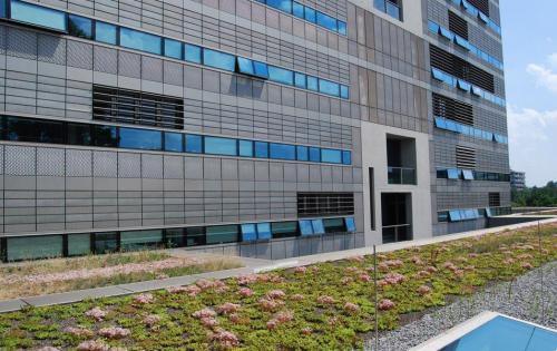 Extensive Dachbegrünung des Forschunginstituts BioQuant in Heidelberg