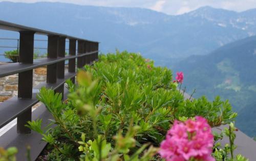 Gründach des Hotels Intercontinental im bayerischen Berchtesgaden mit Blick auf die Bergwelt der Umgebung