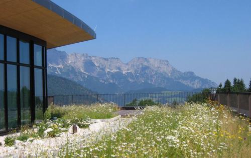 Extensive Dachbegrünung des Hotels Intercontinental in Berchtesgaden