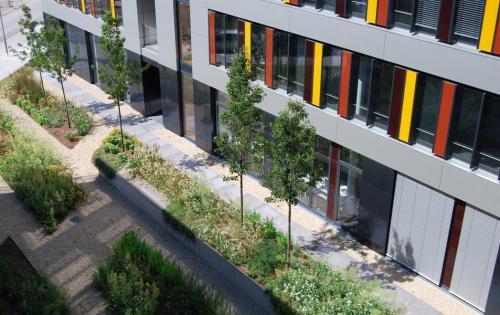 Intensive Dachbegrünung der Tiefgarage des Technologiezentrums MAFINEX in Mannheim