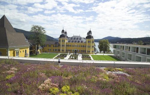 Extensive Dachbegrünung des Hotels Schloss Velden am Wörthersee