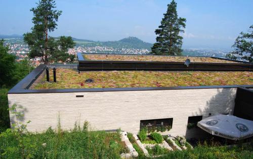 Dachbegrünung des Waldcafés im schwäbischen Pfullingen