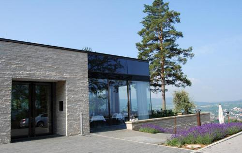 Dachbegrünung des Waldcafés in Pfullingen