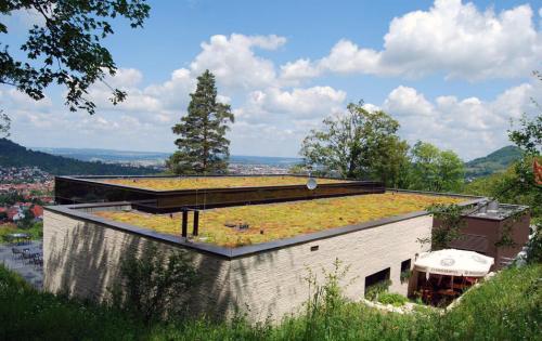 Extensive Dachbegrünung des Waldcafés in Pfullingen