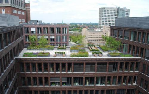 Blick auf die Dachbegrünung des Verwaltungsgebäudes des Dortmunder U