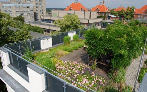 Gartendach der Wiegmann-Klinik für psychosomatische Medizin in Berlin