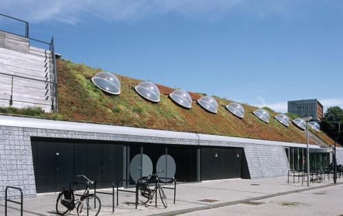 Extensive Dachbegrünung der Akademie für Leibeserziehung der Fachhochschule Amsterdam