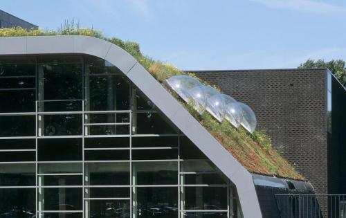 Gründach der Akademie für Leibeserziehung der Fachhochschule Amsterdam