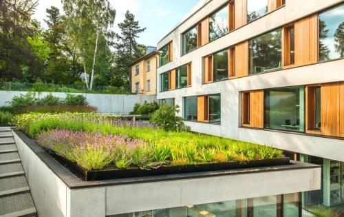 Gründach des Architekturbüros Blocher Partners, Stuttgart