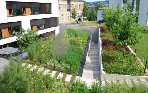 Gartendach des Architekturbüros Blocher Partners, Stuttgart